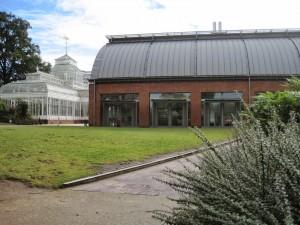 Horniman Museum cafe