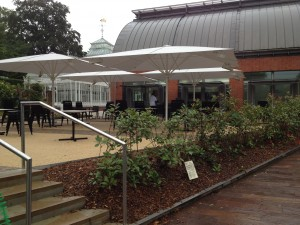 Horniman Museum visitor catering